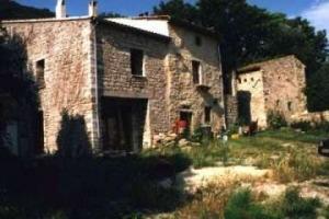09 Kräuter der Provence - Collinshof